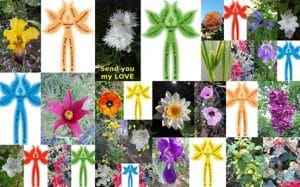 Human, Flower, Plant, spiritual Flowers, Dimension of Humankind, Which Flower are You?, peace, New Renaissance, New way of Thinking, bettter world, Flowerpower, Global Sowing Project of 99,999 human Flowers, artistduo Adelheid & Huub Kortekaas, multicultural society, Quantum Art, Human Being a Flower, awareness,